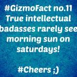 Gizmofact no. 11