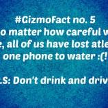 GizmoFact no. 5