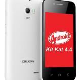 Celkon Campus A354C with Android 4.4 KitKat launched for Rs. 2,599