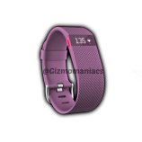 Fitbit launched a range of Health Bands in India